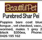 Purebred Shar Pei Puppies bare coat blue tongue , vet checked, vacc, wormed, males 1 grey 2 black $350ea, Phone: 0426 195 162