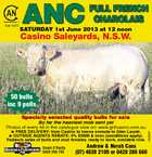 Est 1972 SATURDAY 1st June 2013 at 12 noon Casino Saleyards, N.S.W. 50 bulls inc 9 polls Specially selected quality bulls for sale  FREE DELIVERY: from Casino to towns enroute to Glen Laurel.  OUTSIDE AGENTS REBATE: 4% $3000 &amp;amp; over, (conditions apply). Paddock sales of bulls and stud females, ready to work, available now. David O&amp;#39;Reilly 0428 299 743 Andrew &amp;amp; Norah Cass (07) 4628 2109 or 0428 286 660 1623607 By far the heaviest mob sent yet Photos of every lot in the catalogue view on: www.gnfcasino.com.au