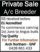 Private Sale rivate A/c Breeder 55 Hereford heifers EU Accredited ted To commence calving 1st June to Angus bulls Top Quality For Further Information Further Inform Arch North Arch Northam - GNF 0428 661 433