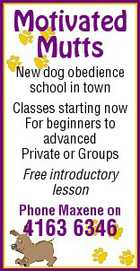 Motivated Mutts New dog obedience school in town Classes starting now For beginners to advanced Private or Groups Free introductory lesson Phone Maxene on 4163 6346