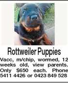 Rottweiler Puppies Vacc, m/chip, wormed, 12 weeks old, view parents. Only $650 each. Phone 5411 4426 or 0423 849 528