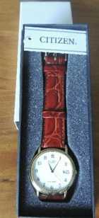 Citizen Gents watch gift boxed, $120 lot Goonellabah. P: 02 6624 8459
