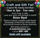 Craft and Gift Fair at Ipswich RSL Saturday 22nd March 10am to 2pm - Free entry Good variety of stalls. Lucky door prizes with proceeds to benefit Blaise Wyatt Blaise is 4 and has a condition called Spastic Quadriplegic Cerebral Palsy. Money raised will go directly towards his therapy treatments. More details available from di.tonkin@hotmail.com or phone 3091 1406 Stalls still available