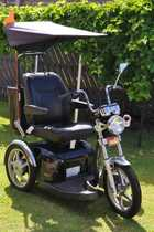 Luxury Black 3 wheel electric mobility wheelchair with swivel seat. Purchased new Feb 2013. As new condition, hardly used. Item no longer required. Includes canopy & rear carry bag. 3800 each ONO0450 602 404 vlajica@bigpond.com