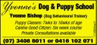 Yvonne's Dog & Puppy School (Dog Behavioural Trainer) Puppy Classes: 7wks to 16wks of age Canine Good Citizen: Six week course Private Consultations available 1743644aaH Yvonne Bishop (07) 3408 8011 or 0416 102 071
