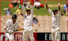 Australian wicketkeeper Adam Gilchrist and captain Ricky Ponting appeal for the wicket of Stephen Fleming. Getty Images