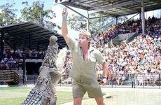 Steve Irwin, the legendary Crocodile Hunter, at Australia Zoo in Beerwah