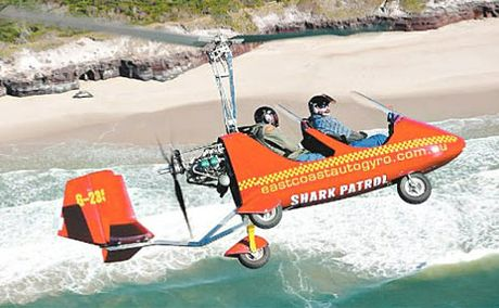 Aviation company East Coast Autogyro has begun patrolling beaches for sharks.
