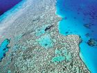 "AUSTRALIA has narrowly avoided having the Great Barrier Reef labelled ""in danger"" by UNESCO."