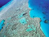 An aerial view of the Great Barrier Reef.