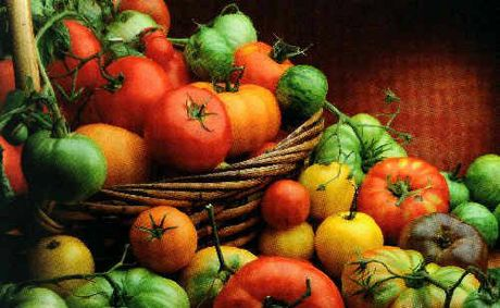 Grower group AUSVEG has raised concerns about potential imports of tomatoes.
