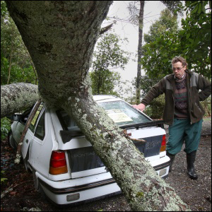 Tim Short by the tree that smashed his car on Ohauiti Road. Photo: Sam Ackland.