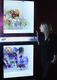 "HONEY VISION: Anna Bland with the new ""What a Bee Sees"" which shows how bees' colour vision differs from ours."