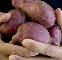 Kumara more than doubled in price.