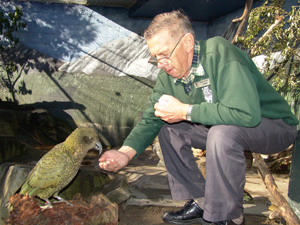 INSPIRATION TO MANY: Orana Park volunteer Sam Roberts hand feeds a kea in the aviary he helped create.