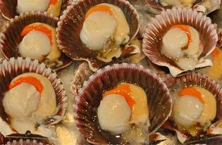 They look delicious but it would pay to resist the temptation of gathering shellfish.