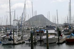 Tauranga Bridge Marina plans to build a 245m breakwater at the northern end of the marina.