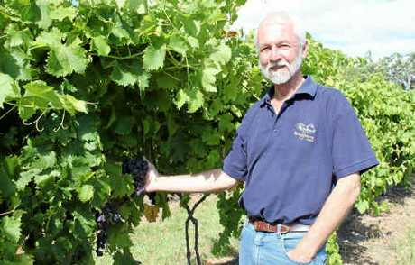 Bungawarra Winery owner Jeff Harden is among seven Granite Belt wineries to donate to the huge flood relief wine raffle.