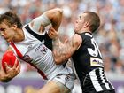 ST Kilda's premiership window may be closed, but Scott Watters has promised supporters the club will build for another assault on a long-awaited second flag.
