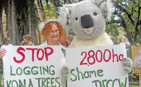 Friends of the Koala president Lorraine Vass and friend.