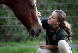 Lily Kwiecien works hard with horses at Tauranga Riding for the Disabled.