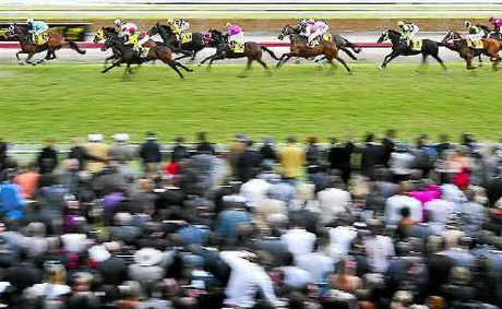 The 2011 Grafton Cup field passes the healthy crowd on the first lap of the 2,350 metre event.