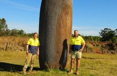 Australia Zoo&#39;s head of construction Mark Niven and resident artist Cameron Chapman.