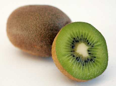 A damning report has revealed several failings that should be sounding alarm bells through the kiwifruit industry.