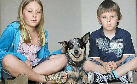 Stubby with Kayla, 7, and Travis Moore, 5, after being poisoned.