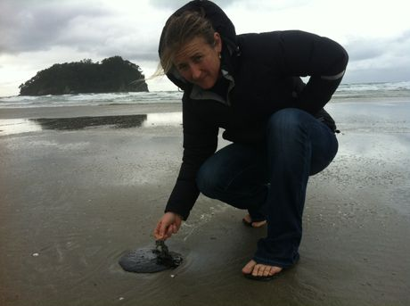HORRIFYING: Mount Maunganui resident Tracey Lewis checks one of hundreds of oil blobs that have washed ashore at Mount Main Beach this morning. KIRI GILLESPIE