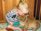 Madeline Robinson with the Darling Downs Zoo's new lion cub Sassy.