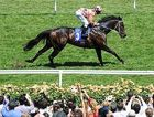 Black Caviar does it again, taking her winning streak to 16.