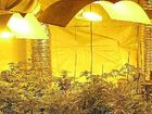 AG officers discovered an elaborate hydroponic set-up and seized $700,000 worth of cannabis from a rural property in Wardell in June 2011.