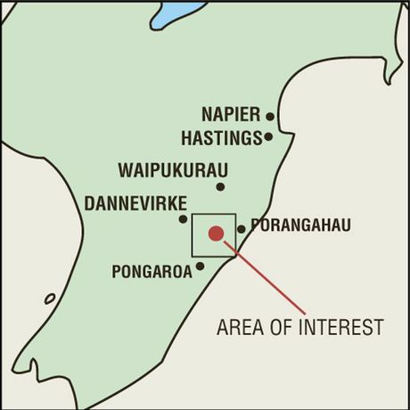 Oil companies are interested in an area  between Porangahau and Dannevirke.