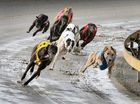 The May TAB bonus Quaddie continues during tonight's Hatrick meeting where an extra $5000 will be added to the starting pool.