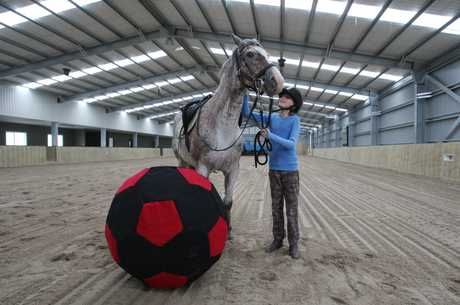 Cliona Whyte, 10, will be one of the first riders in the new indoor area during the Own Your Own Pony school holiday programme at Tauranga Riding for the Disabled.