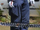 A GODFATHER-like crime scene remains taped off in a western Sydney street where a man awoke to find a bloody horse head on the bonnet of his smashed-up car.