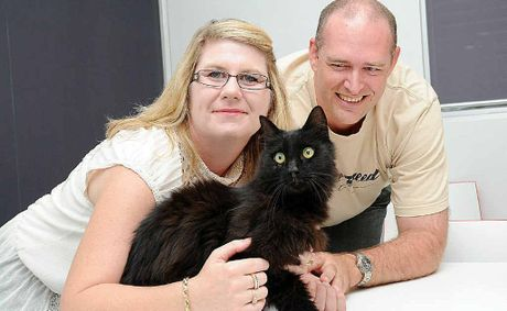 Anna Stevenson and Chris Gordon are reunited with Dexter four-and-a-half years after the cat was lost in Victoria.