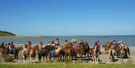 REIN THEM IN: The whanau horse trekkers from Dannevirke, on their way to Owahanga Station at Pongaroa, for the annual Aohanga Horse Sports and Rodeo.PHOTO/SUPPLIED