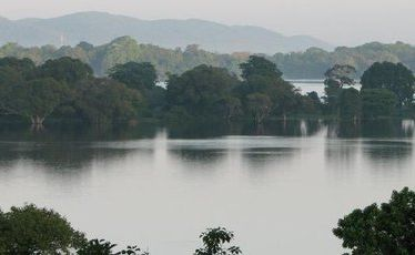 Sri Lanka's tranquil Kandalama Lake as seen from the Heritance Kandalama hotel.