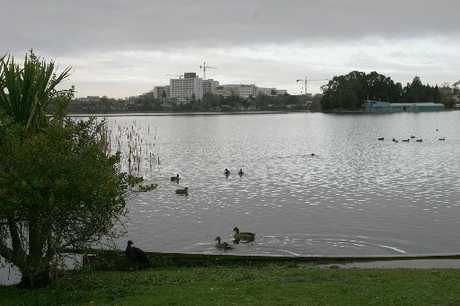 Serious and recreational athletes will circle Hamilton's Lake Rotoroa on Sunday.