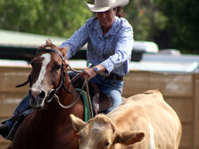 Baralaba Show Campdraft - Central Queensland Campdrafting