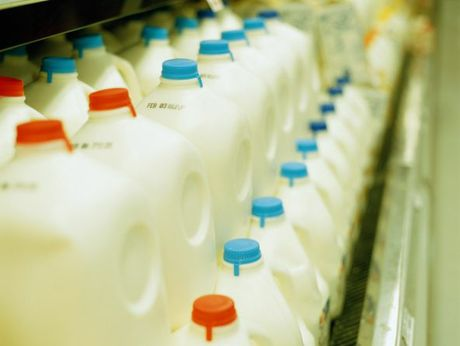 Fonterra will roll out the milk in schools programme this year.