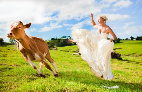 The farm is hosting a Trash the Wedding Dress' family fun day in October Emma Ruddle/Emma Ruddle Photography