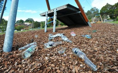 Parents with young kids arrived at the Shephard Park playground this morning to find wheel marks across the park and beer bottles and broken glass scattered across the grounds.