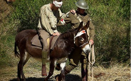 Simpson and his donkey will be a part of the re-enactment at Emu Gully.