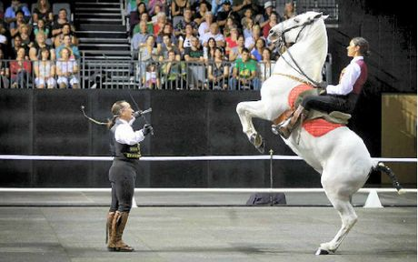 MAGNIFICENT STALLION: Treat yourself to a night of spectacle when El Caballo Blanco comes to town.