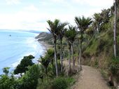 The scenery on the Mangawhai beach walk is great. Photo / Jim Eagles