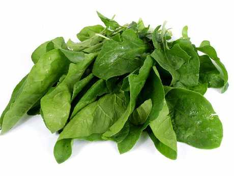 Only use young spinach leaves in salad.