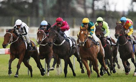 Ruakaka race couse set to expand thanks to $800,000.